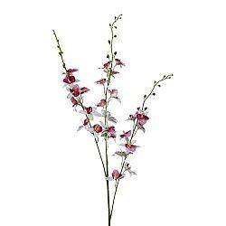 Orchidea 3018125mm-42