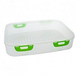 Orion Plastový box na piknik s klipmi 40 x 30 x 8 cm